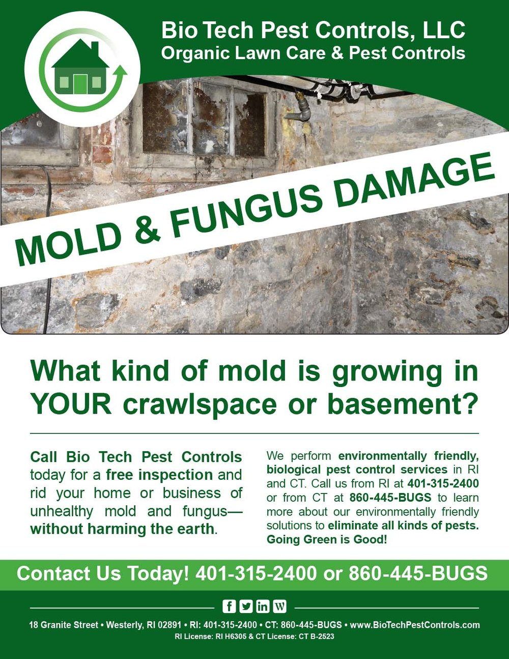 Mold_and_Fungus_Flyer.jpg