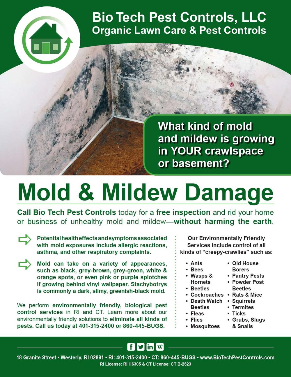 Mold_Mildew_Flyer.jpg