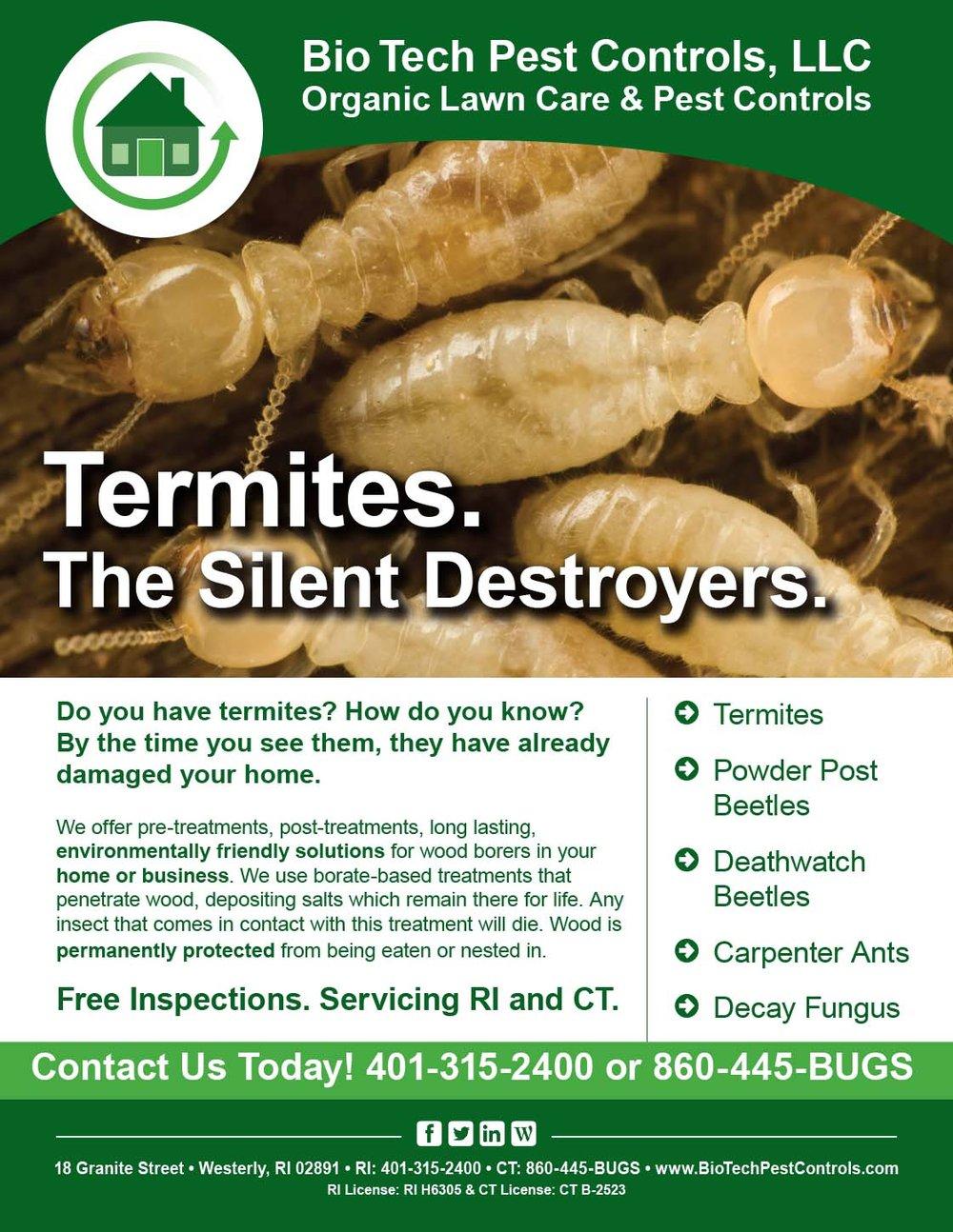 Termites_Flyer.jpg
