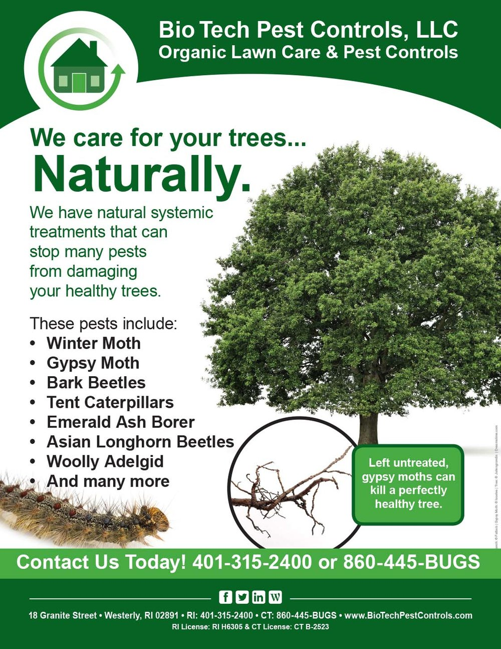 Tree_Care_Flyer.jpg