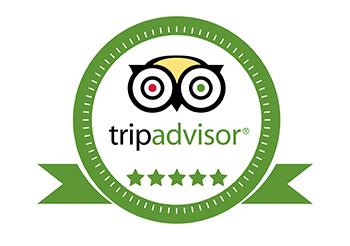 tripadvisor small.png