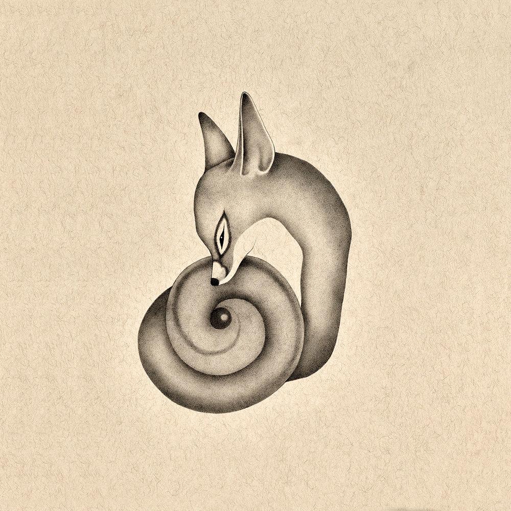 fox13.jpg