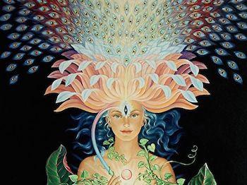 Opening the Lotus