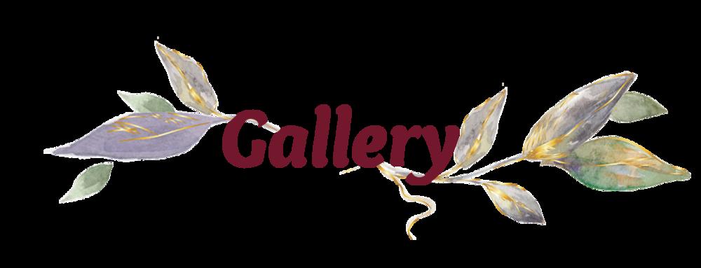 gallery header.png