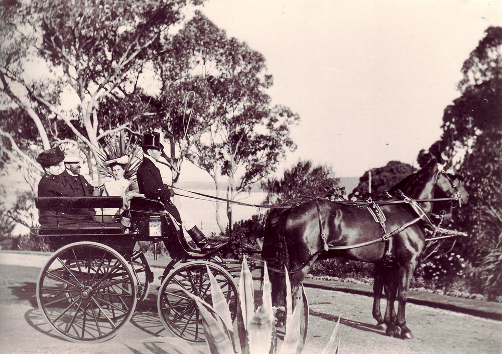 Neil, Jessie and Ellison McNeil in their carriage at The Cliffe, early 1900s. Courtesy Presbyterian Ladies' College Archives.