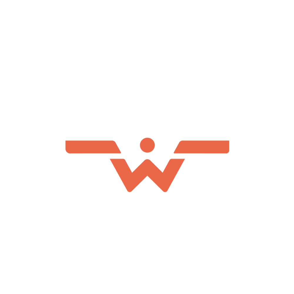 Wings Avionics