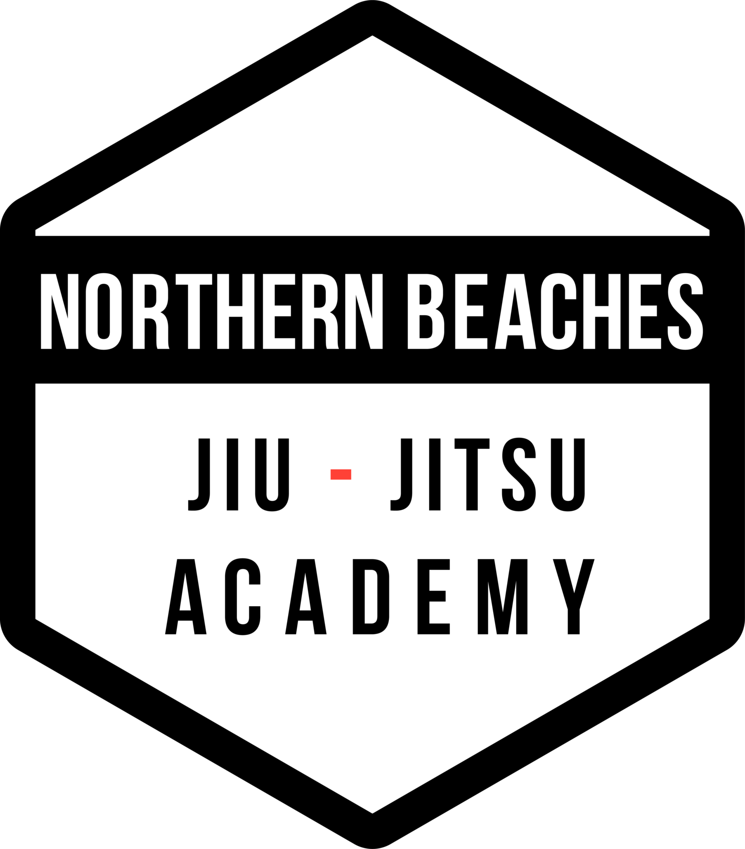 Northern Beaches Jiu Jitsu Academy
