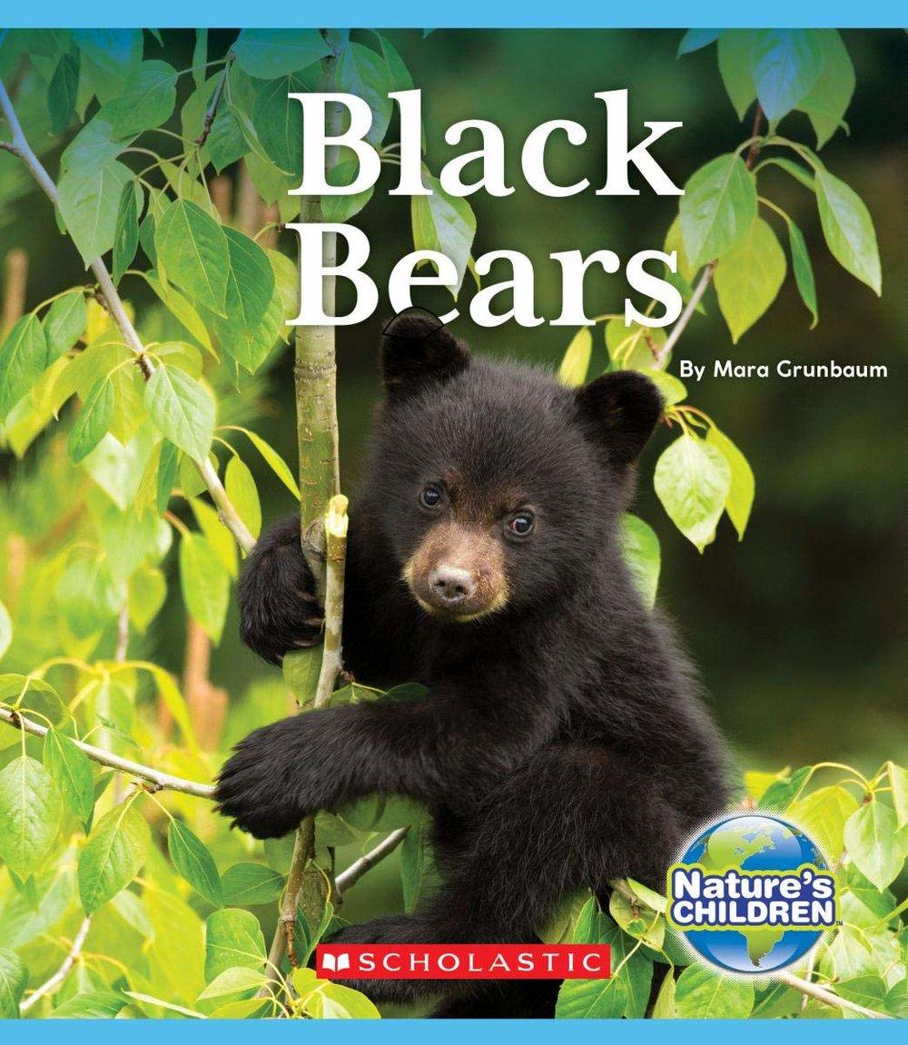 BlackBears.jpg