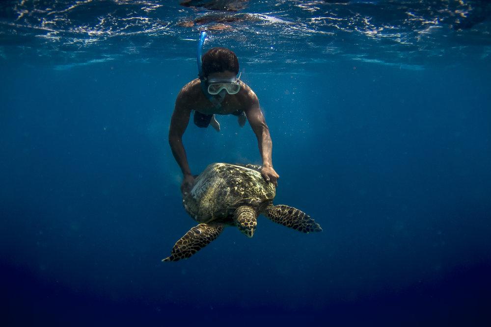 Lombok Diver 2015.jpg