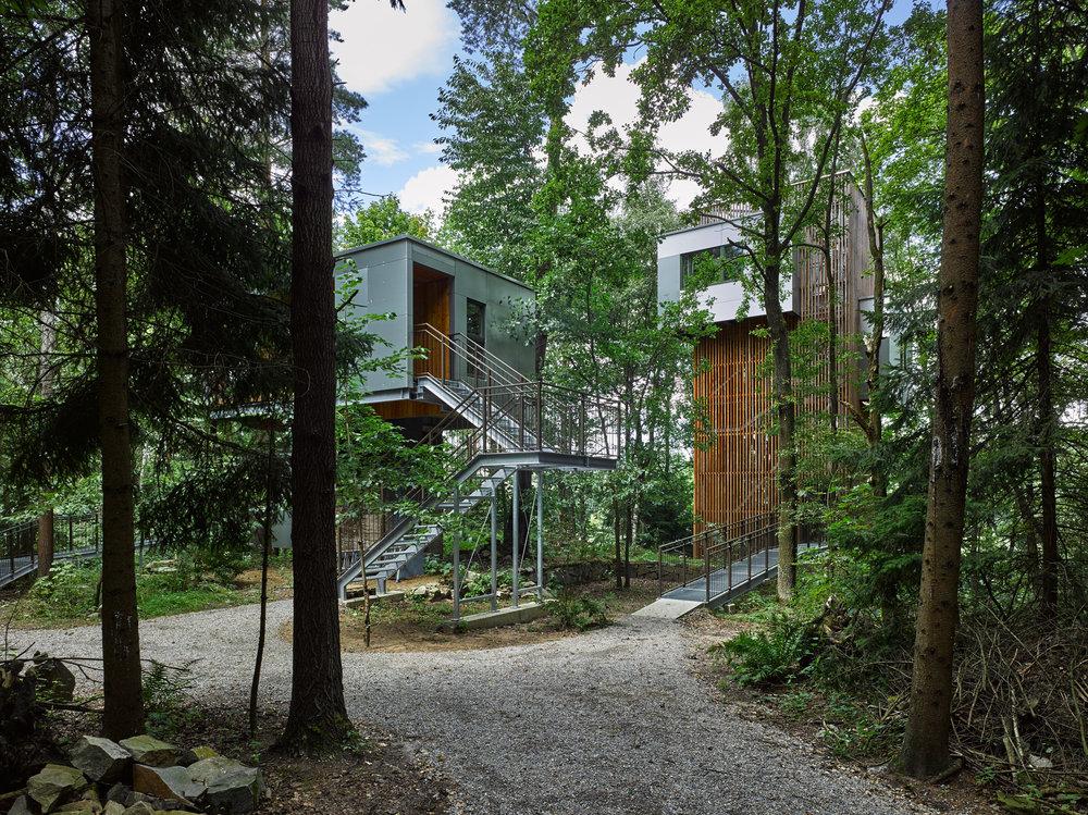 Baumhaus Lodge Schrems.jpg