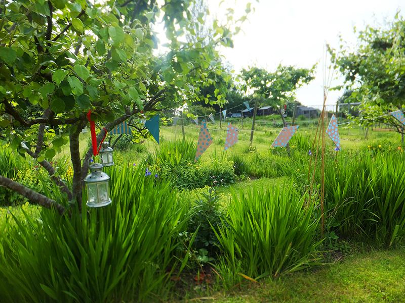 Wedding-garden-jmpblog.jpg