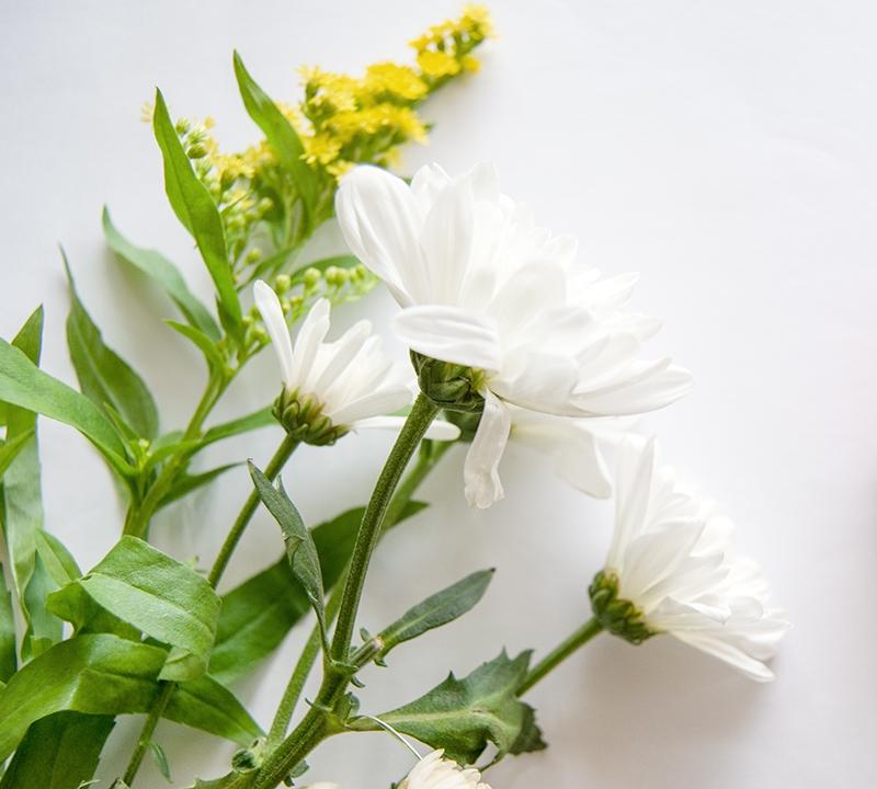 Flowers-1-3.jpg