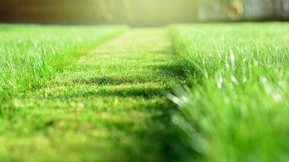 CR-Home-Inlinehero-best-lawn-mowers-tractors-0319-.jpg