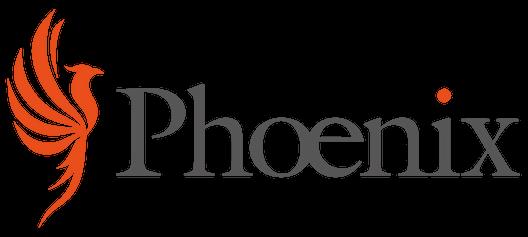 Phoenix Project Solutions