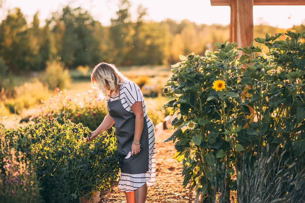 U PICK - Our seasonal floral U Pick runs from July thru October, weather permitting.Public U Pick dates and times are updated regularly on Facebook and Instagram during the U Pick Season.The U PICK gardens are a curated selection of both unique and timeless, annual and perennial flowers, shrubs and grasses. Each season the floral selections are updated to ensure that returning visitors have new blooms to learn about and enjoy.Our field grown flowers are susceptible to everything that Mother Nature can throw at us therefore we cannot guarantee any blooms at any given time.We work at creating an environment that encourages the plants, soil and insects to create an ecosystem that benefits all. We strive to only use natural remedies to treat any issues with our gardens.We provide buckets, scissors/snips and will walk you through the U Pick garden individually or in groups to provide tips on harvest, post harvest care and interesting facts about the plant material.After harvesting your blooms, you may choose to take your flowers home to clean and arrange yourself or you are welcome to stay at the farm to prepare your blooms with assistance and tips on creating your garden bouquet.We provide a baggy with clean water to transport your flowers home at no charge and have an assortment of vessels for purchase.You are welcome to bring along your own vase.All flowers are priced per stem with an average bouquet costing around $25.Send us a message below or call us at 780-445-8134 for information on U Pick flowers.