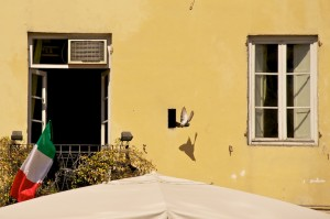 Pigeon flying out of a wall