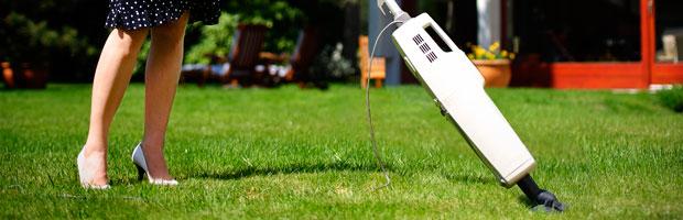 SHOOT: Vacuum your garden