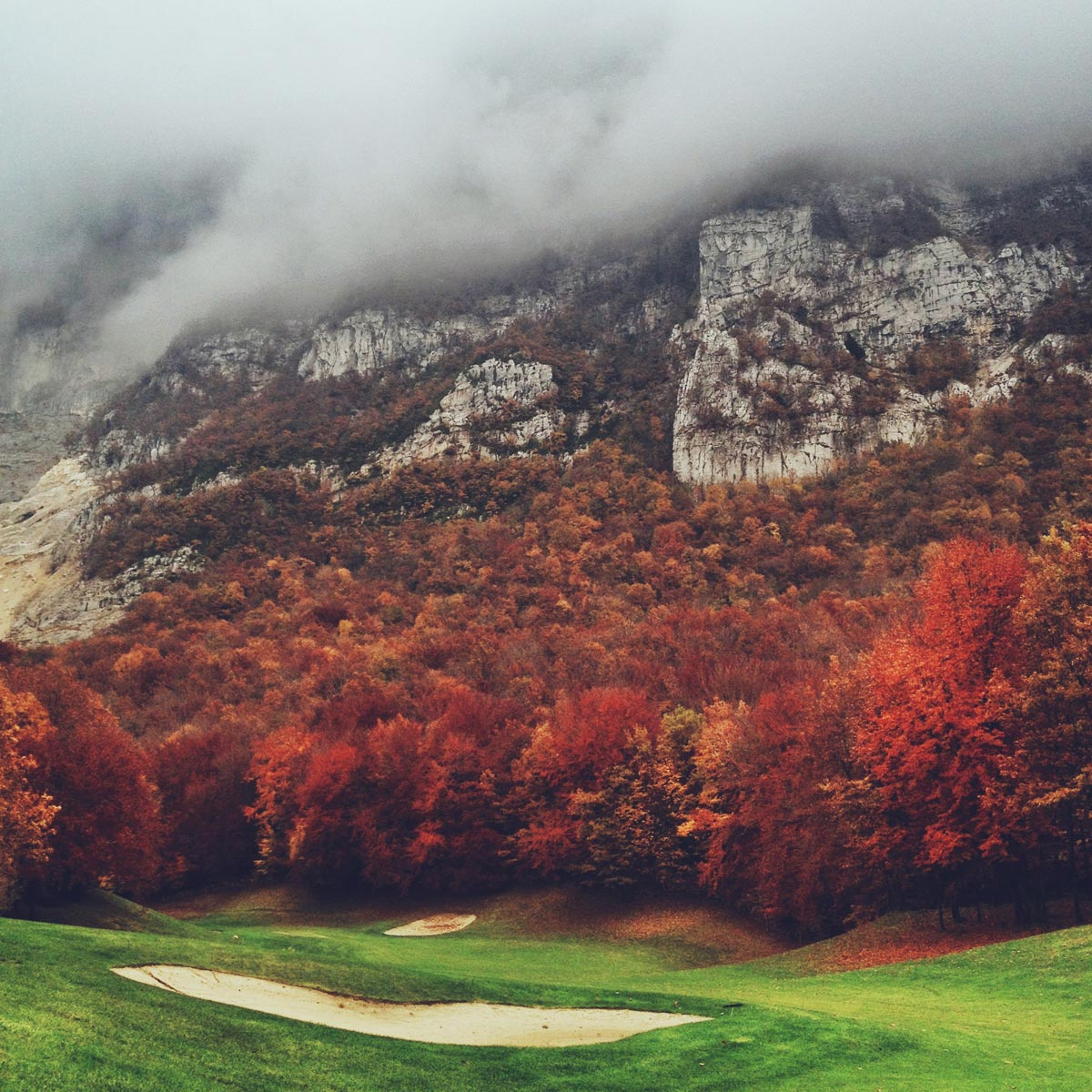Colorful foliage in the fall :: josh fassbind photography