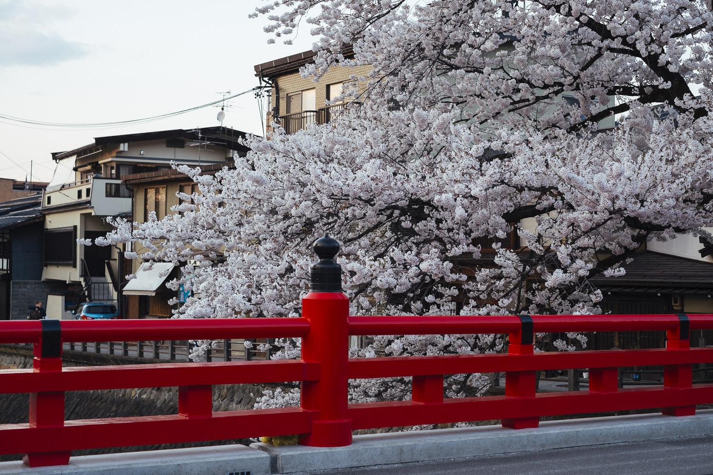 20140424_Takayama_XPRO1_DSF1397