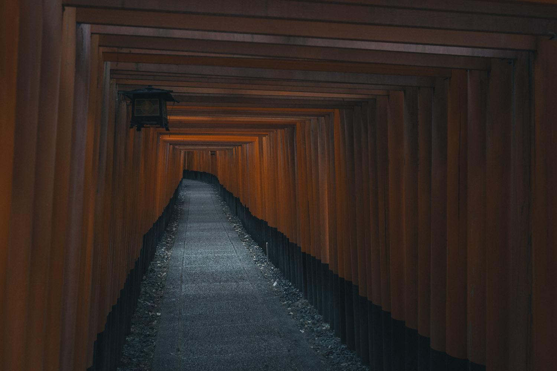 Torri going up Fushimi Inari-taisha.