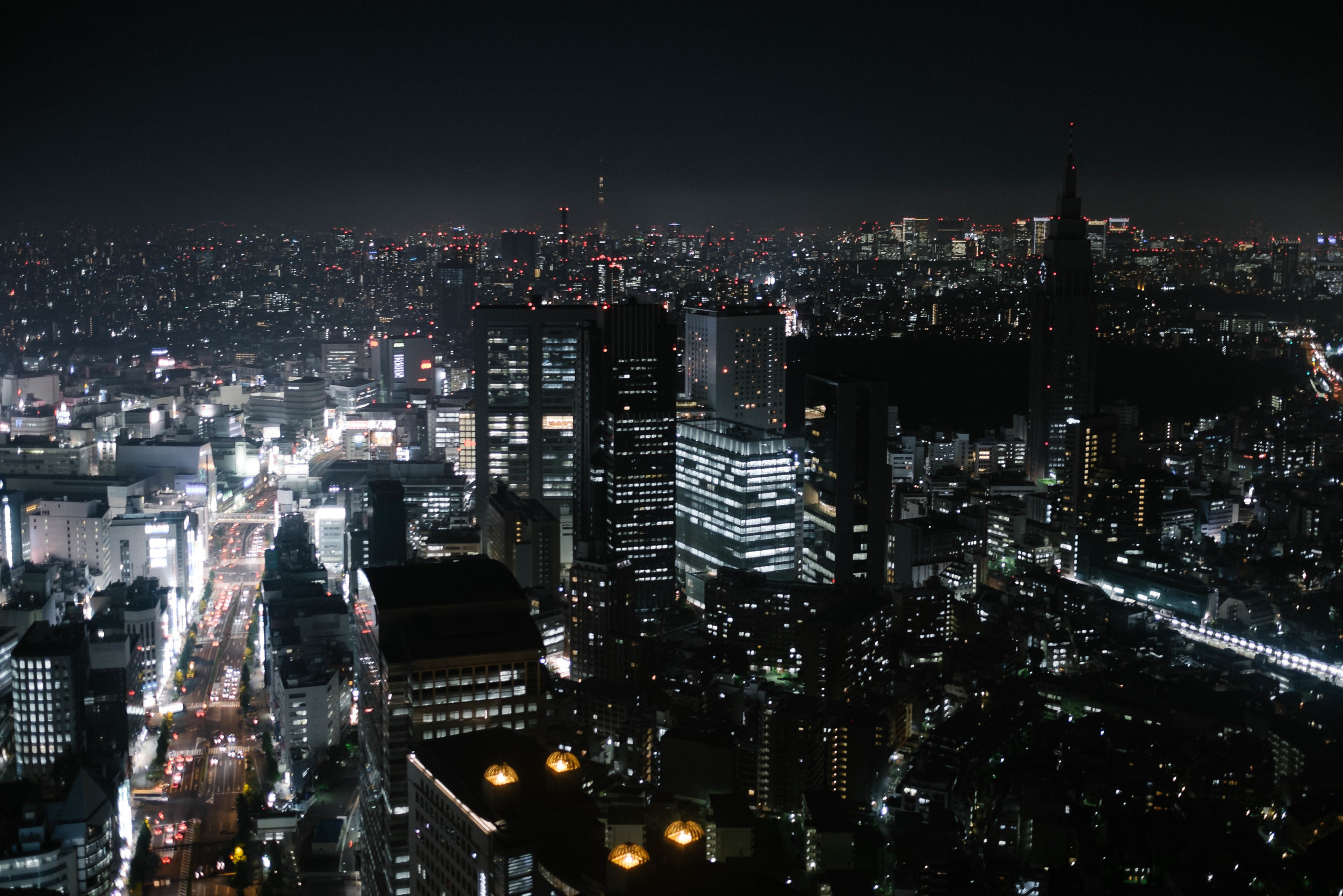 Tokyo from above.