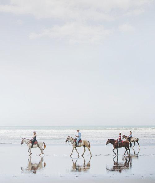 horses+2.jpg