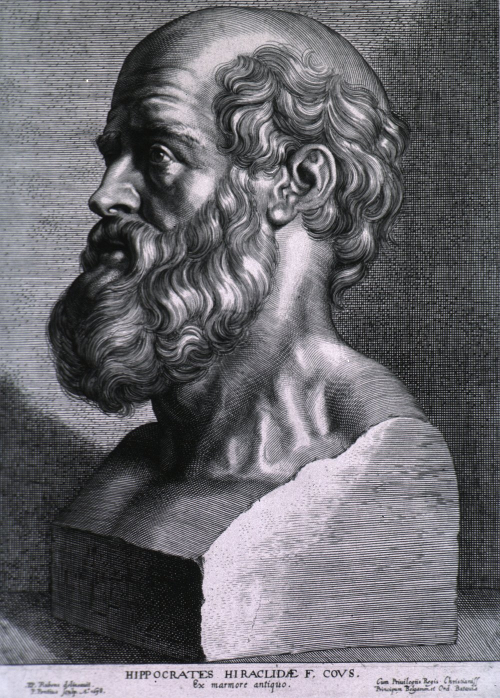 Engraving of Hippocrates by Peter Paul Rubens