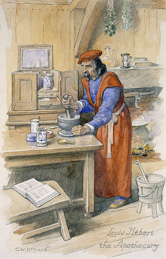 Louis Hébert, the first european apothecary in the New World