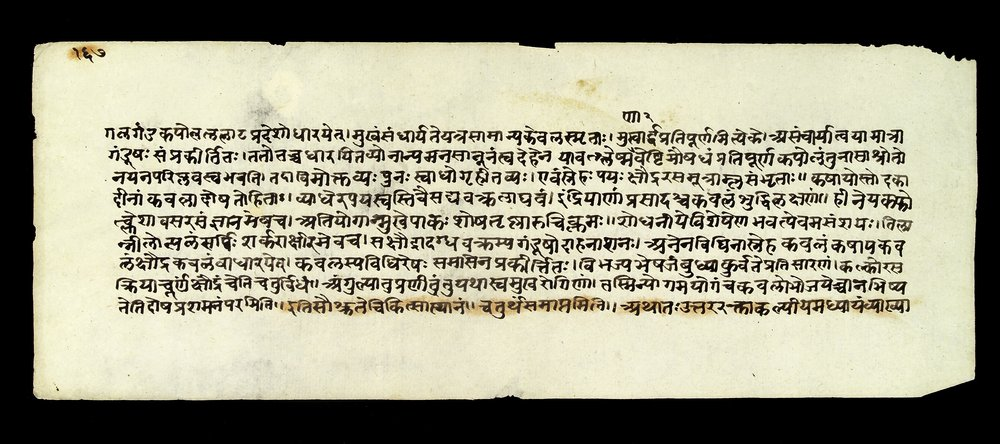 Page from the  Sushruta Samhita