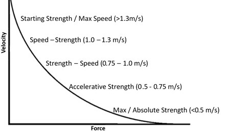 Force-Velocity+Curve.jpg