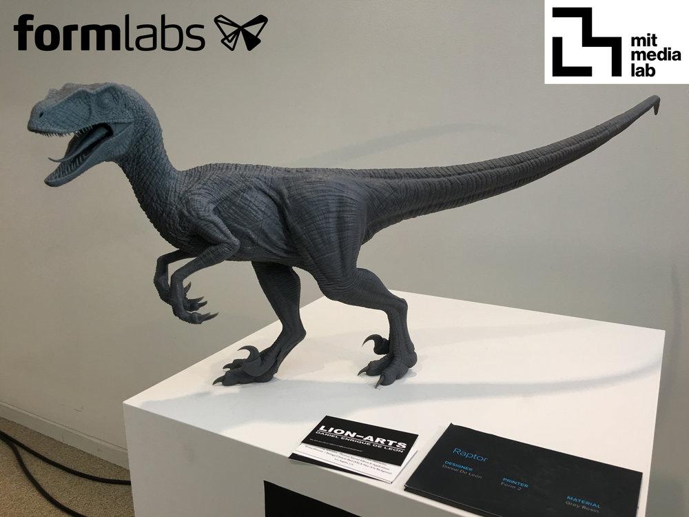RaptorJP3MIT.jpg