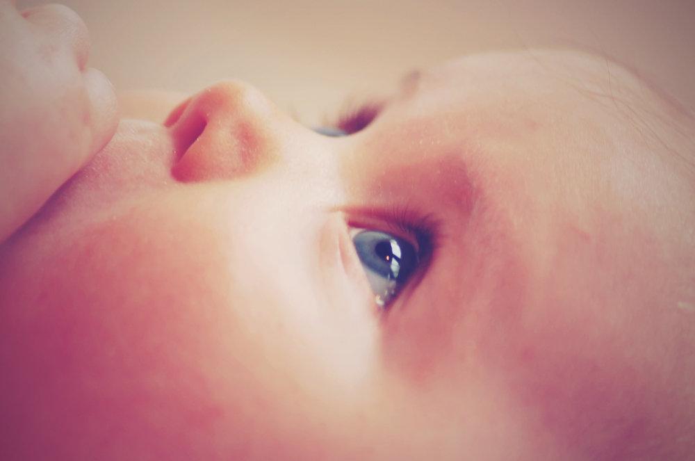 adorable-baby-child-35446.jpg