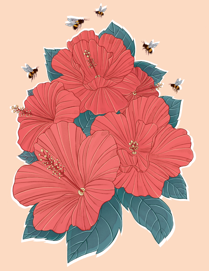 "Illustration of ""Coral Joy"" by Stephanie Singleton"