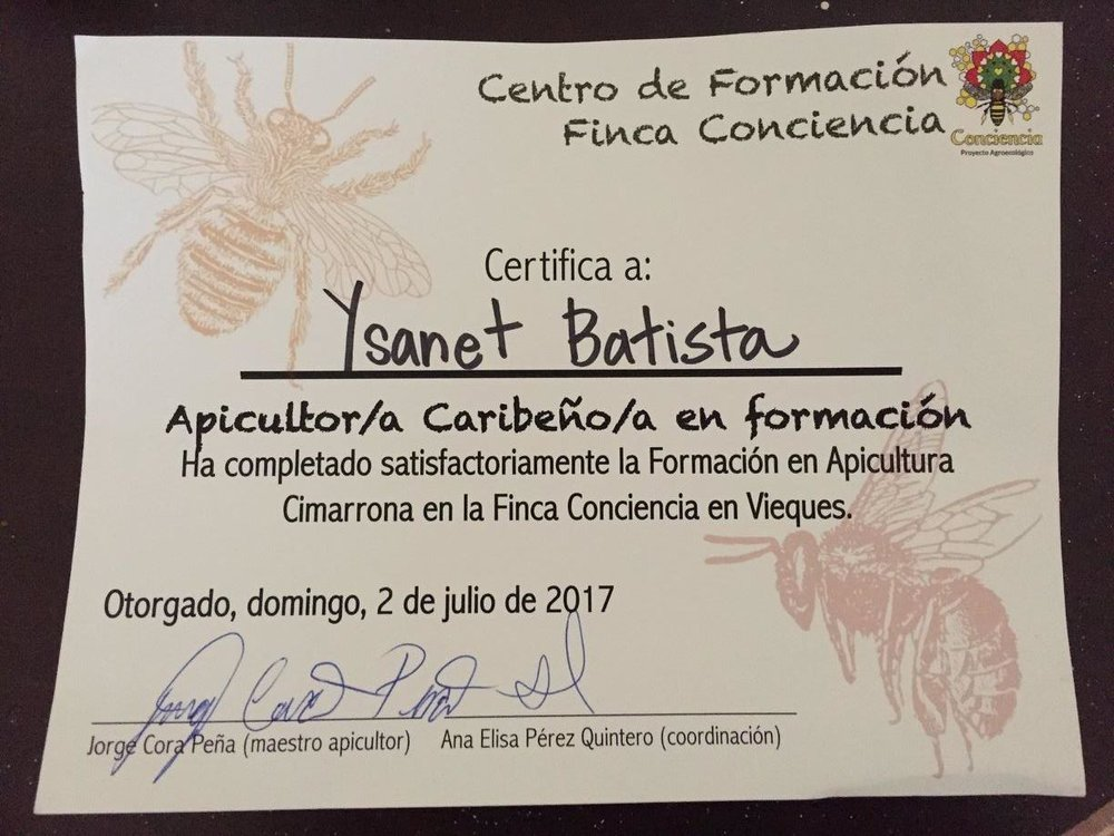 Certificate for Caribbean Beekeeper in Training