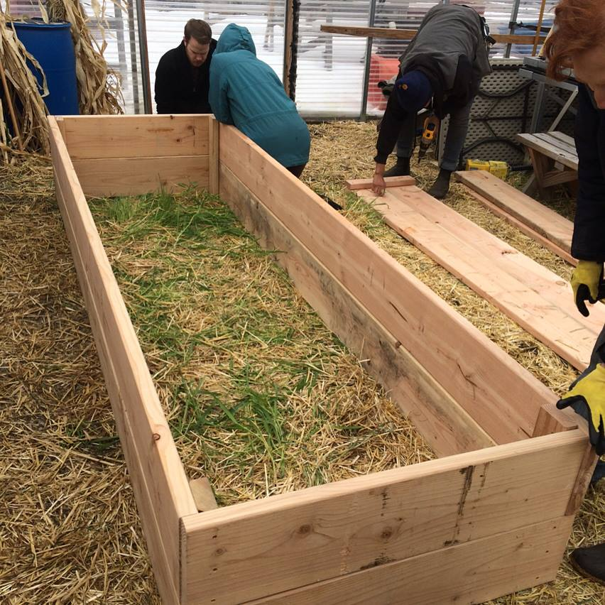 Carpentry and Intro to Building class  @  Farm School NYC  is taught my the incredible Sandy Nurse and during our class we got to build garden beds for New Roots Farm in the South Bronx.