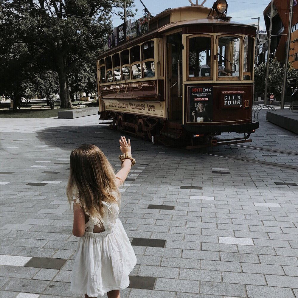Walk through the city and go tram spotting - Walk through the ever changing city of Christchurch or catch a tram for a guided tour.📷 @Wild Hearts