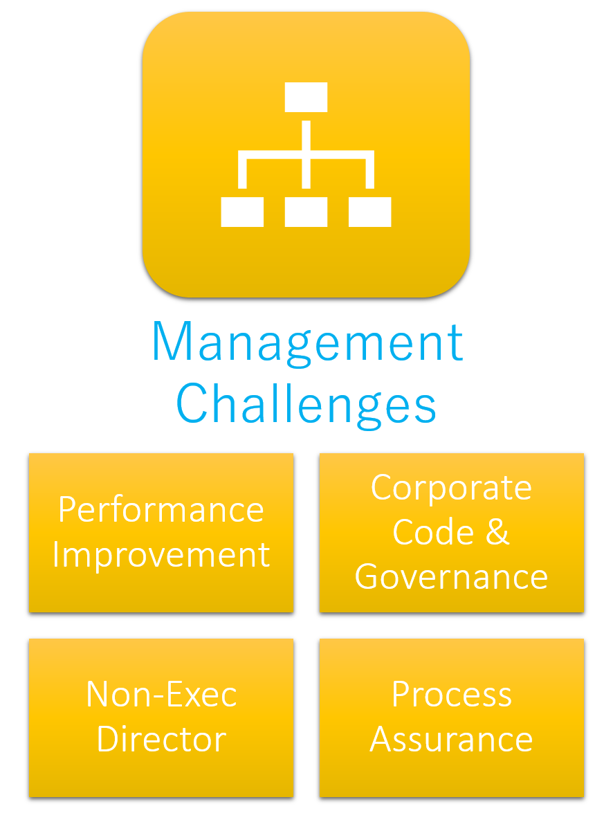 Audeo Fortis Management Challenges