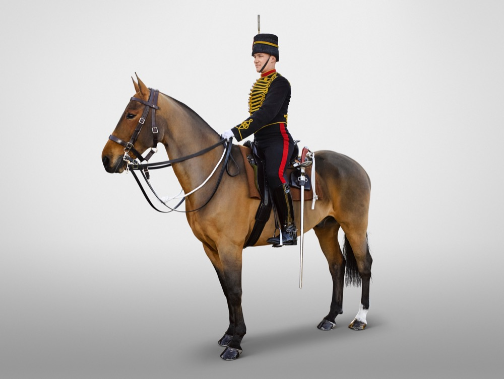 Trooper The King's Troop, Royal Horse Artillery .jpeg