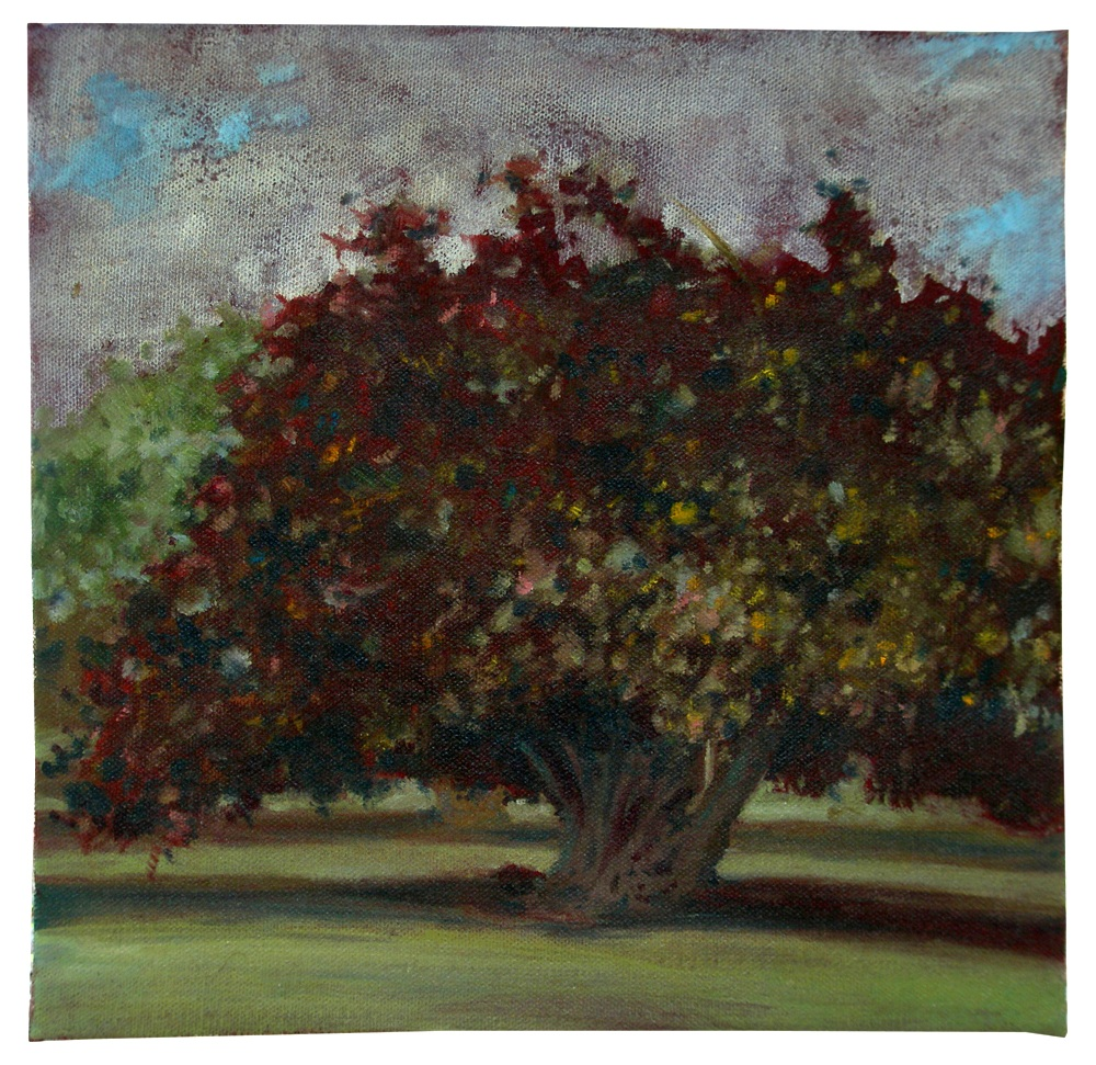 Maui Smoking Tree   oil on canvas, Hawaii. 2008