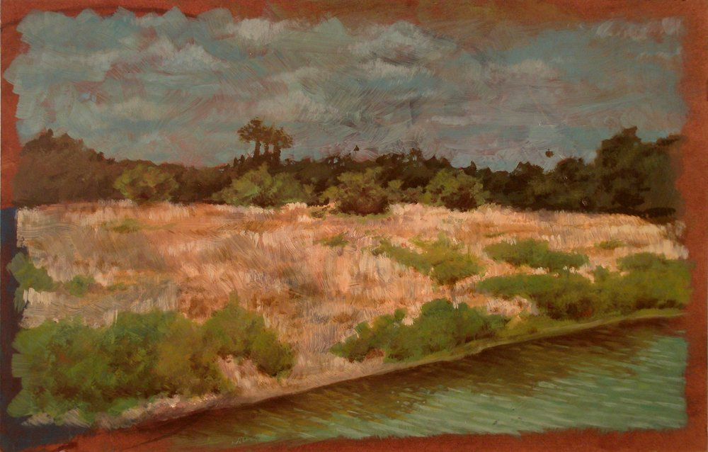 Myakka   oil on masonite, Myakka River State Park. 2012