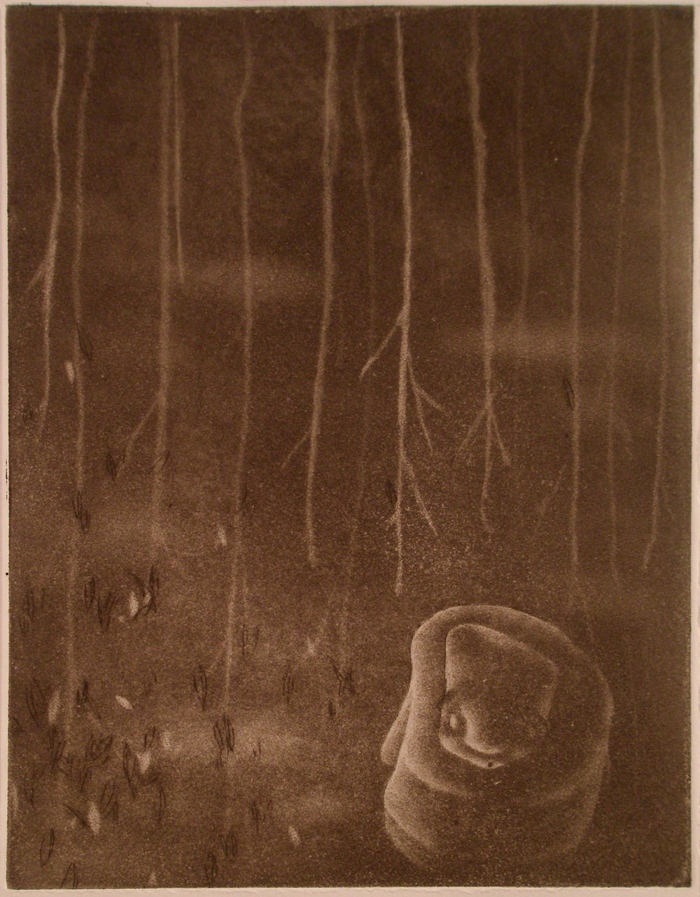 Upside Down Forest   mezzotint. 2008