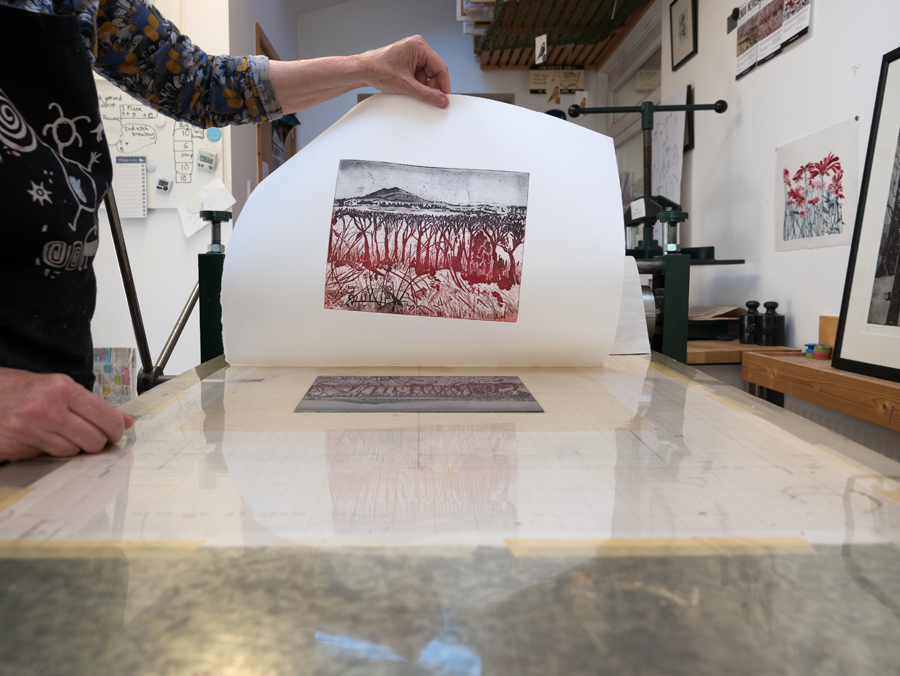 4 printing 'Hedgerow to hillside' on the etching press.jpg