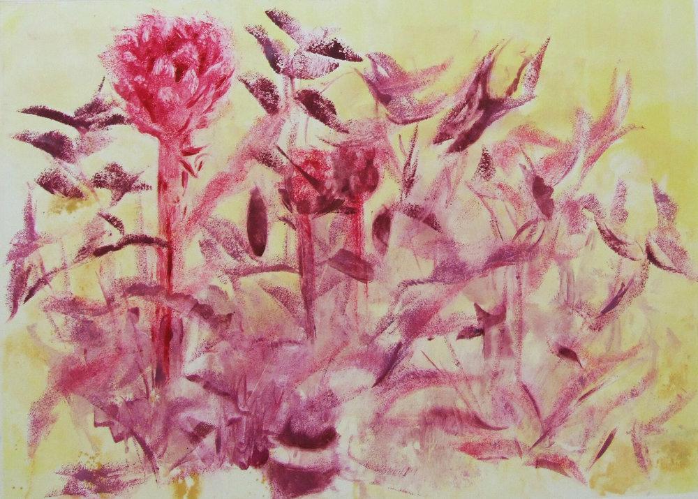 Pink artichokes