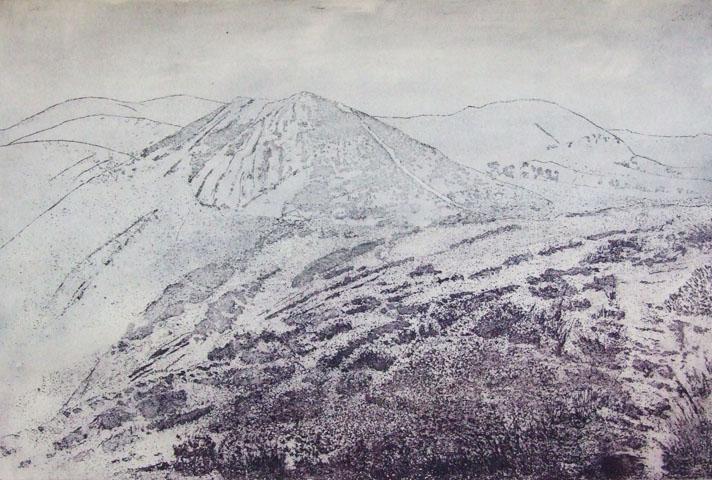 Borderlands-  landscape -etching & aquatint 54x68cm Linda Nevill.jpg