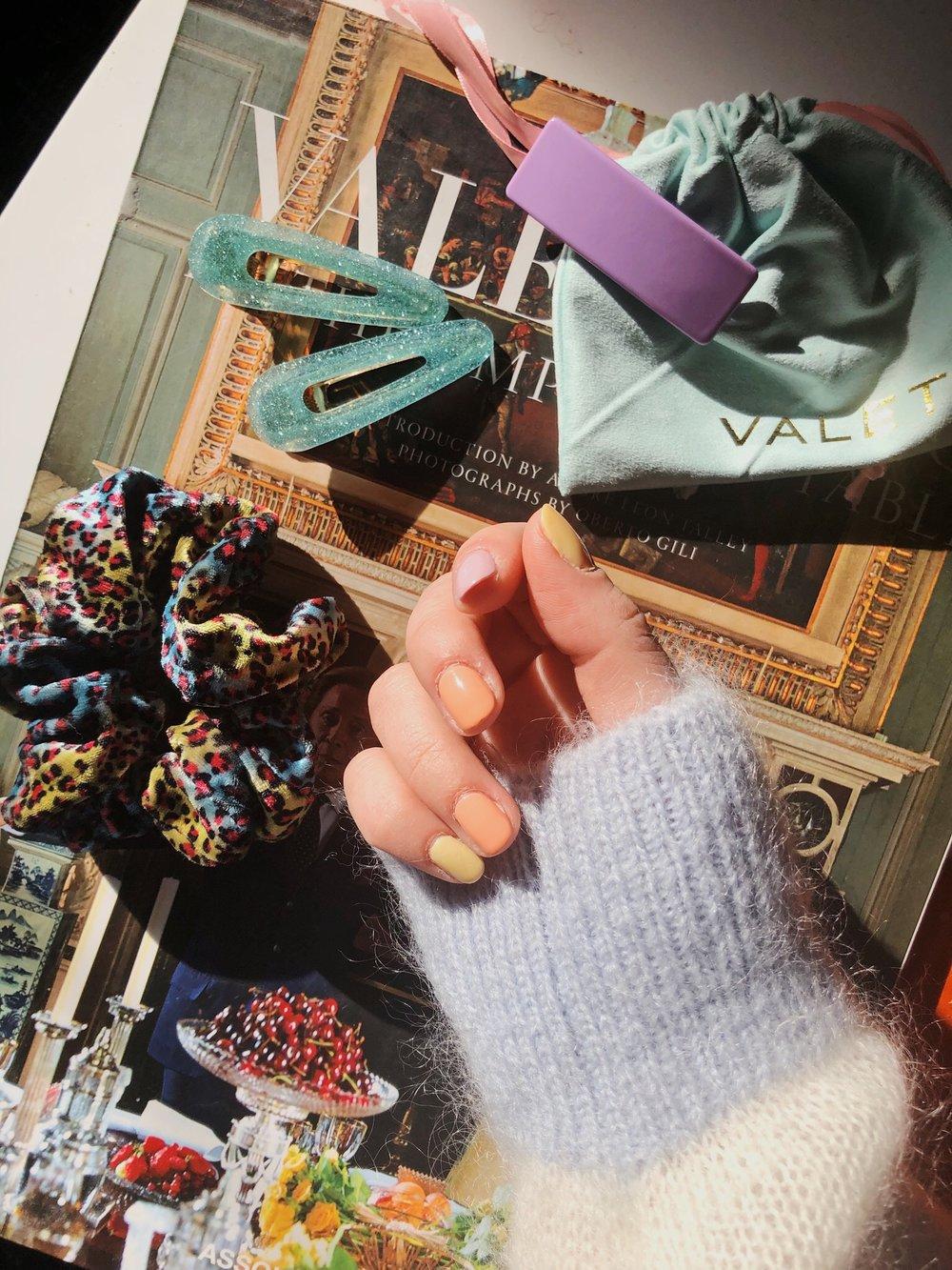 Valet hair clips