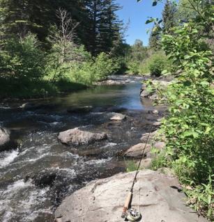 small creek.jpg