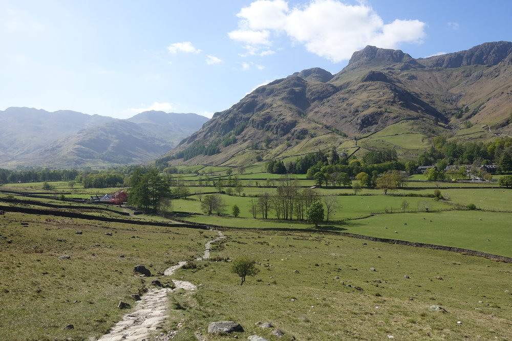 Growing wilder as we get further up the dale