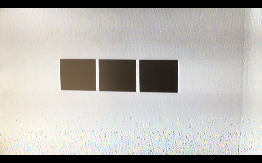 Vanity Surveillance Project (detail)