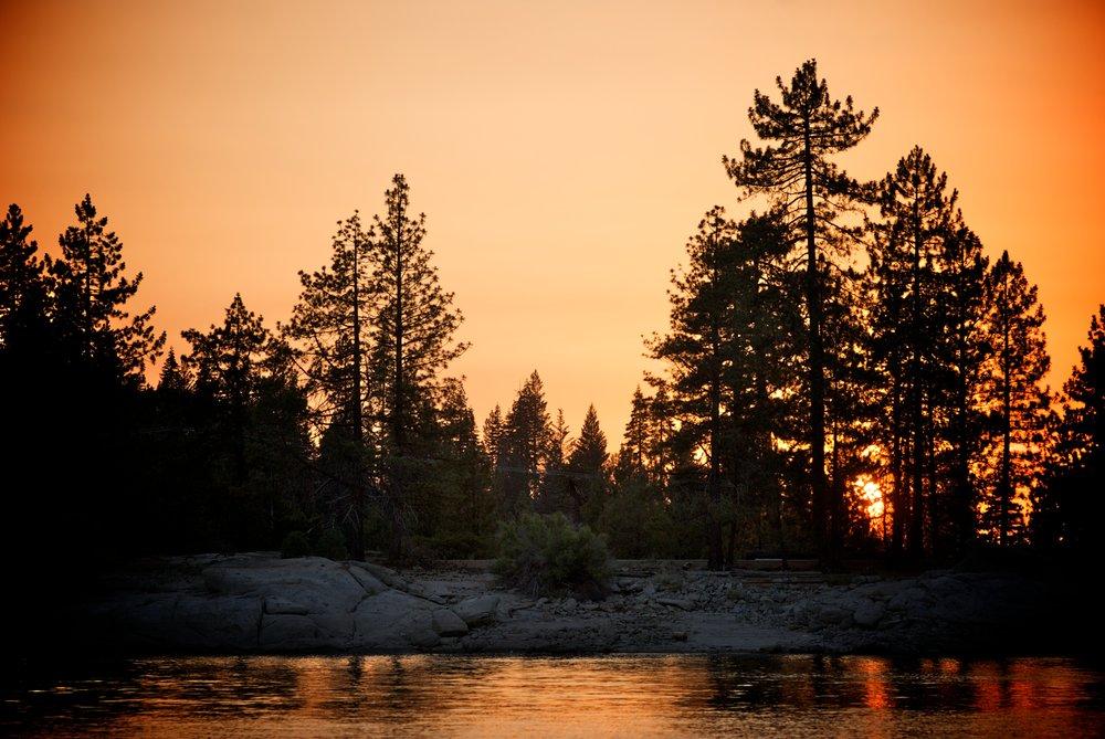 Forrest Sunset.jpg