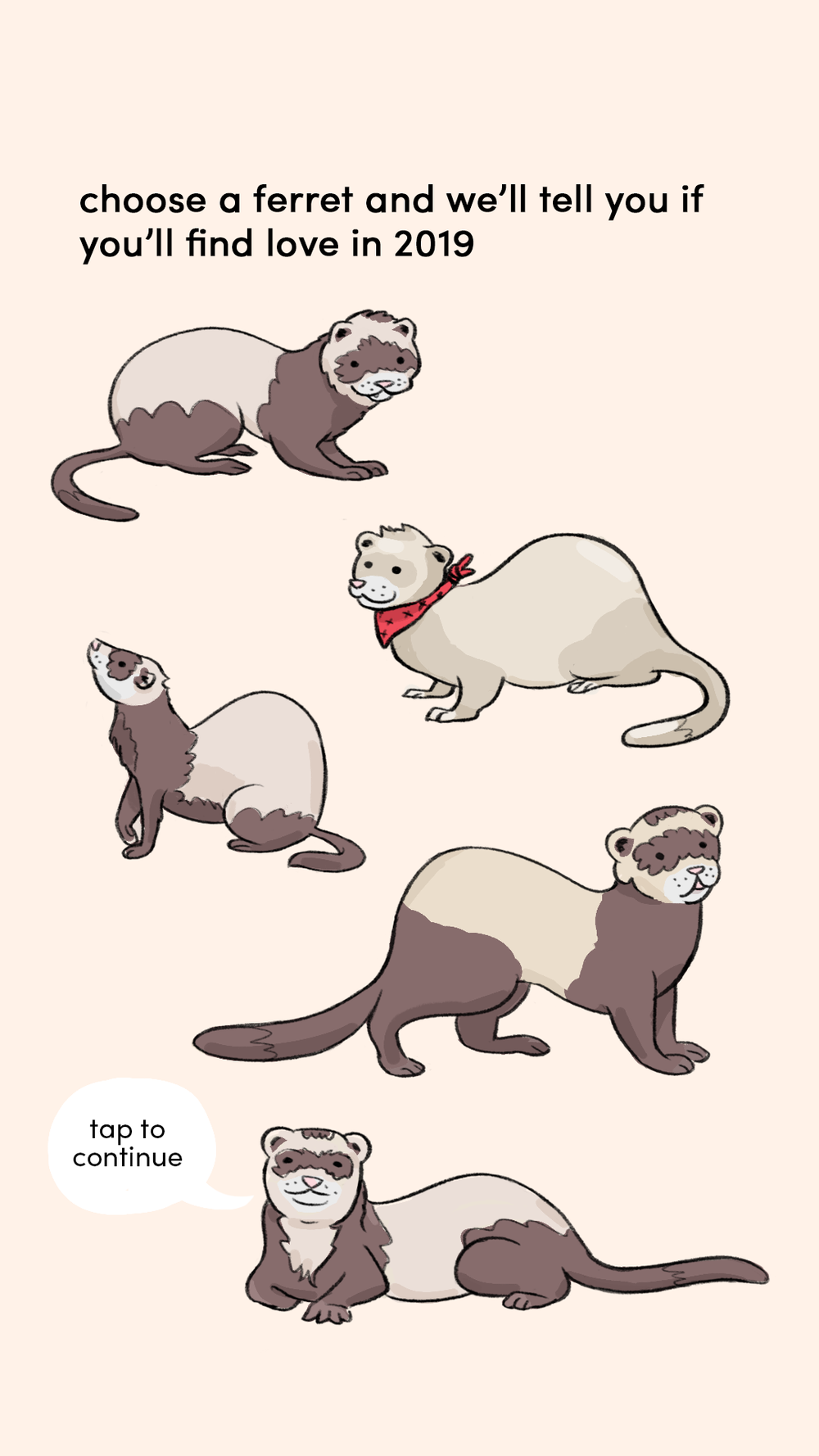 choose a ferret 1.png